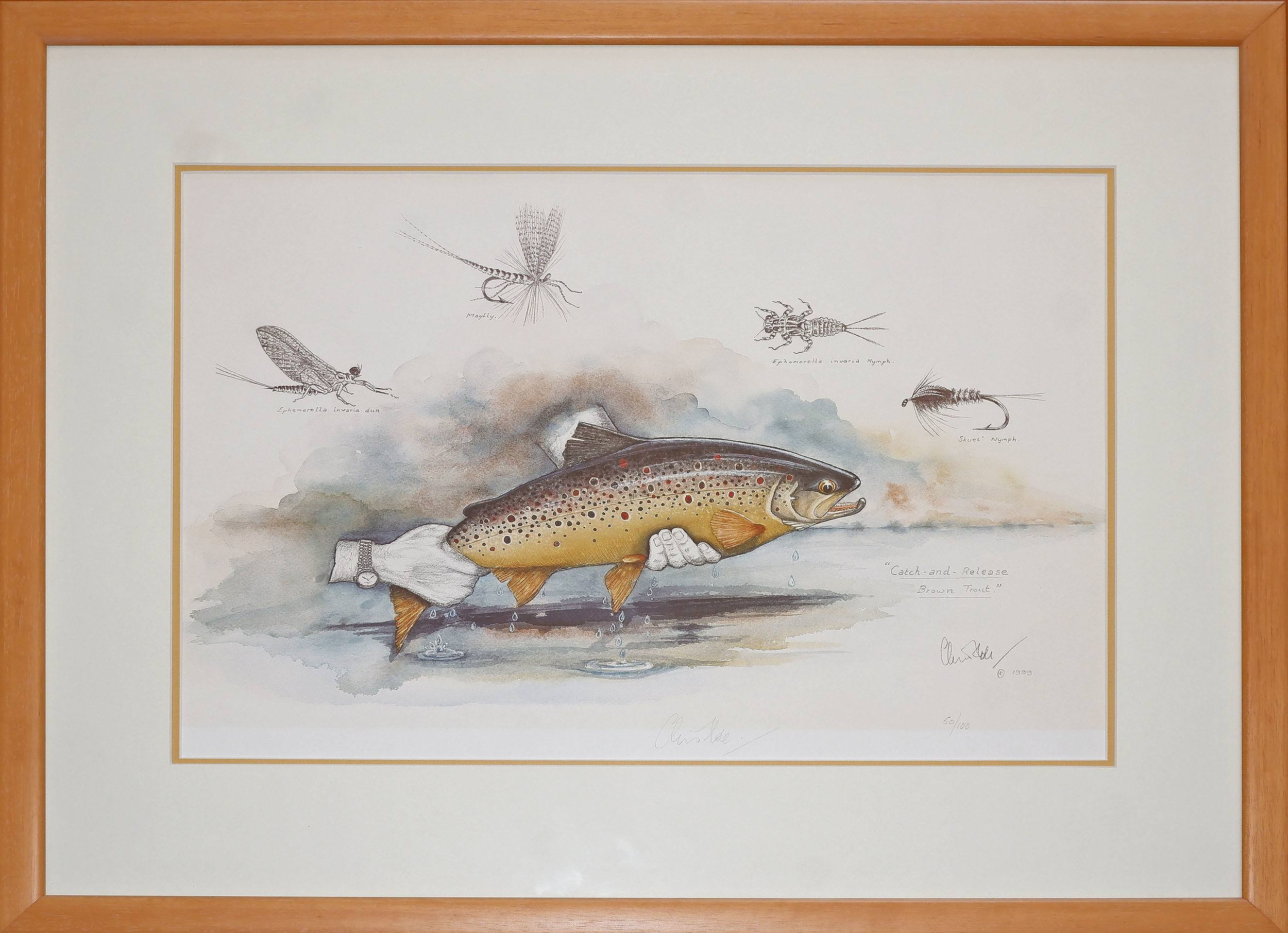 'Chris Hole (20th Century, Australian), Catch and Release Brown Trout, Reproduction Print'