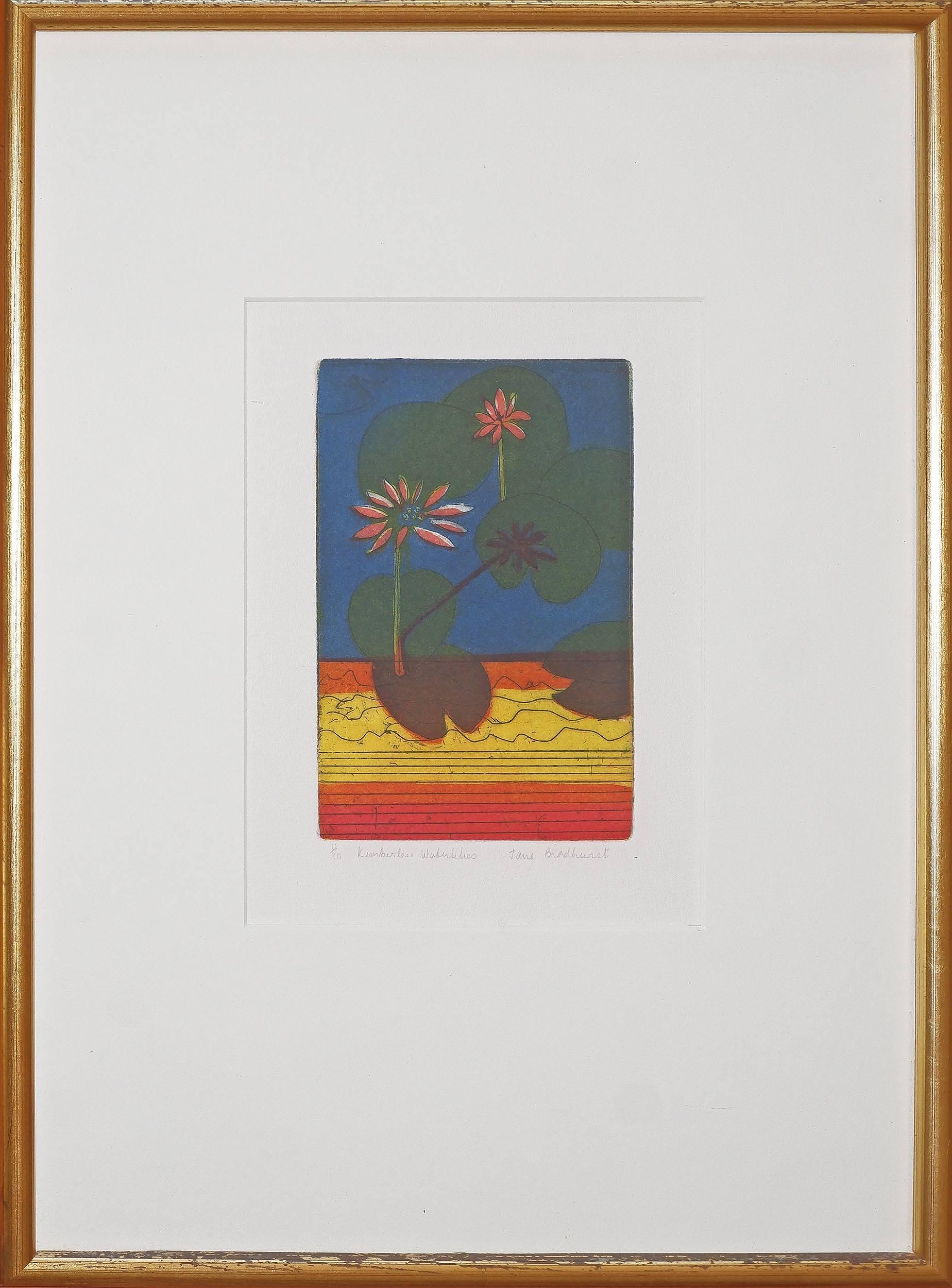 'Jane Bradhurst (20th Century, Australian), Kimberley Waterlillies, Coloured Etching'