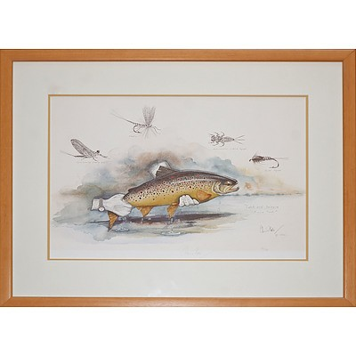 Chris Hole (20th Century, Australian), Catch and Release Brown Trout, Reproduction Print