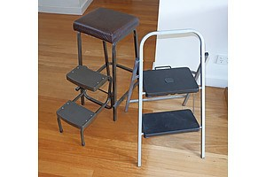 A Collapsible Step Ladder and a Two-Step Stool with Stow-Away Ladder (2)