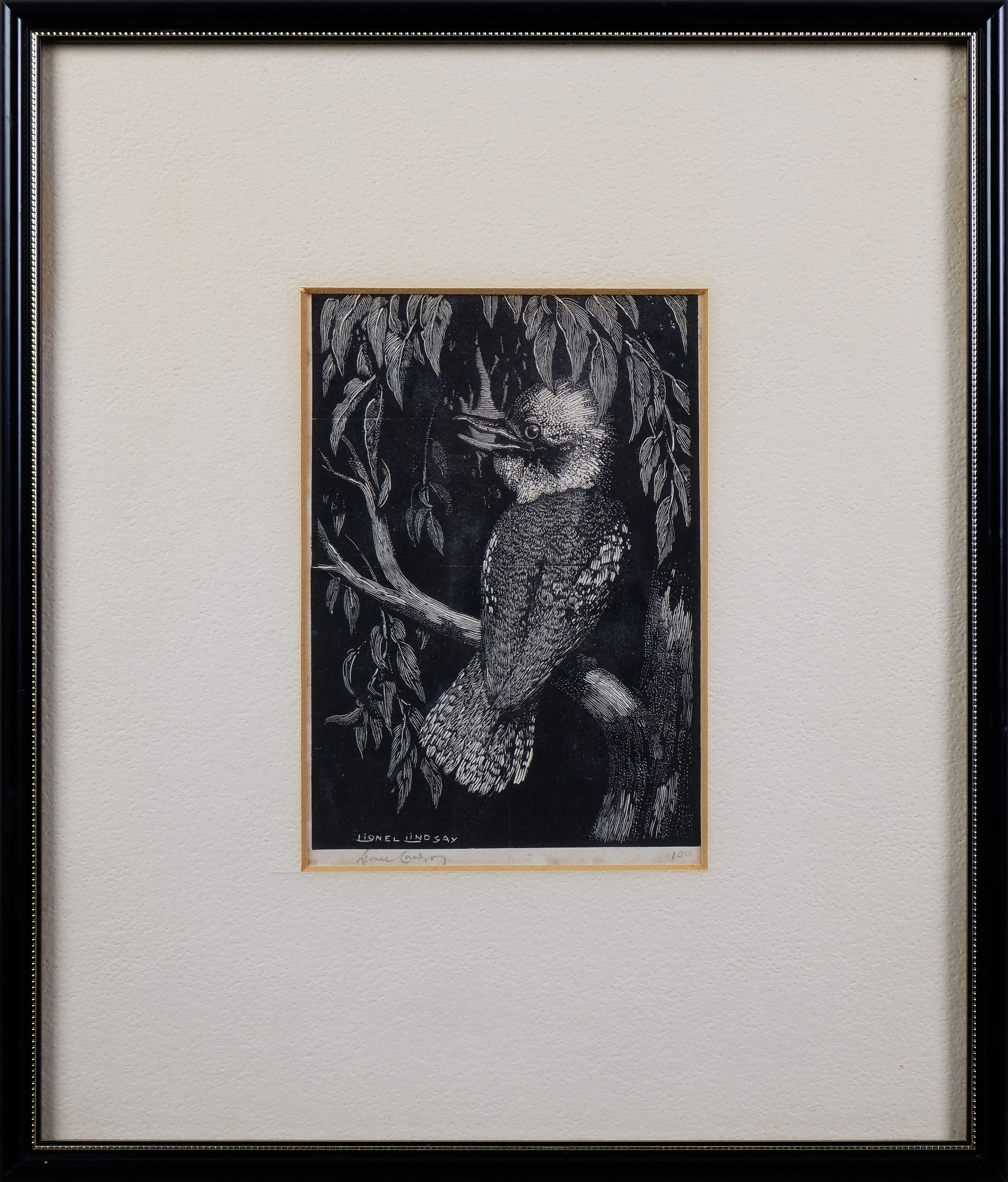 'Lionel Lindsay (1874-1961), The Kookaburra 1923, Woodcut'