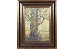 John Gardner (1906-1987), Untitled (Gum Tree), Oil on Board