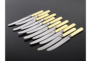 12 Assorted Vintage Faux Bone Handled Knives