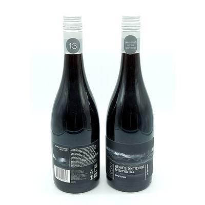 Abel's Tempest Tasmania 2013 Pinot Noir - Lot of Two Bottles (2)