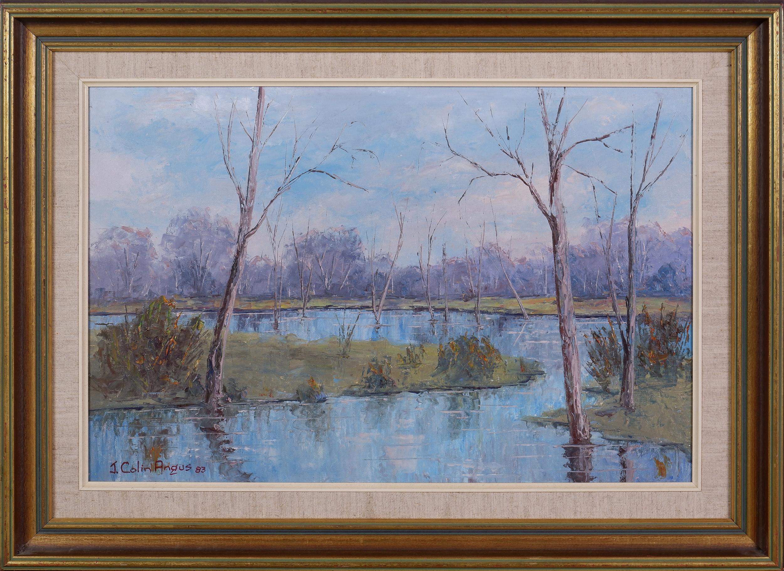 'J. Colin Angus (1907-2002), Lake Mulwala Backwaters 1983, Oil on Canvas on Board'