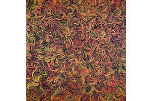 Margaret Scobie (born 1948, Anmatyerre language group), Bush Leaf Medicine, Synthetic Polymer Paint on Canvas