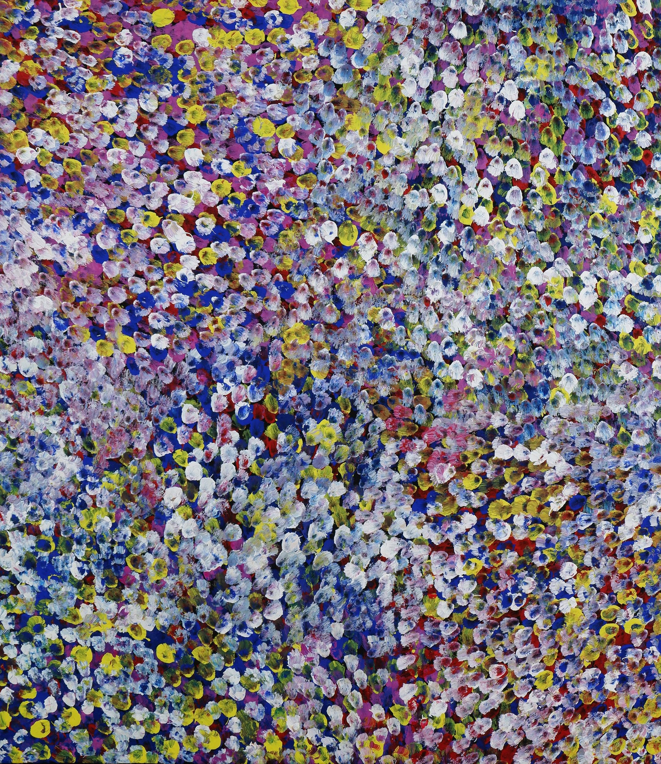 'Bessie Pitjara (born c1960), Bush Plum, Synthetic Polymer Paint on Canvas'