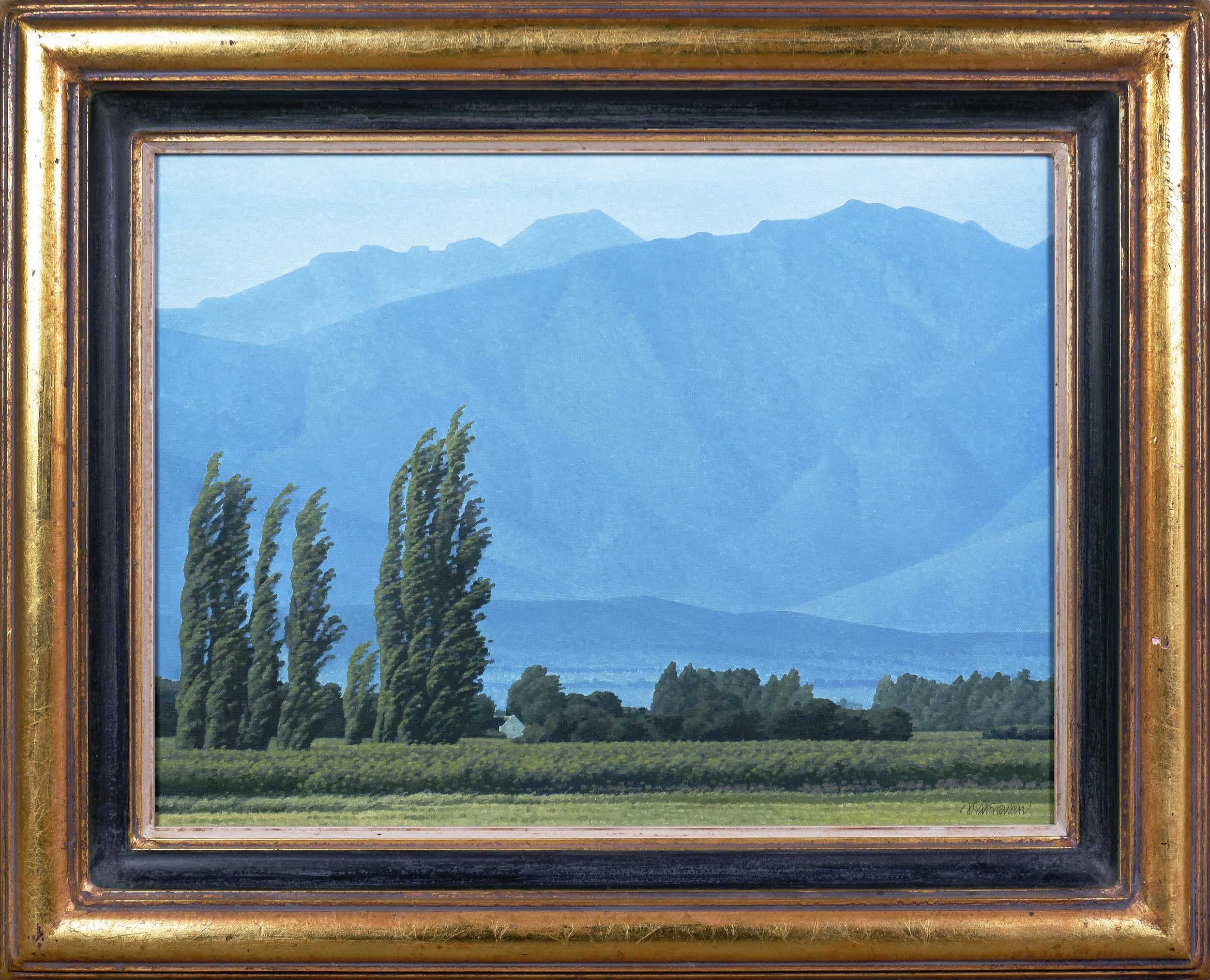 'Daan Vermeulen (born 1938, South African), Mountain Wind, Worcester, Oil on Canvas'