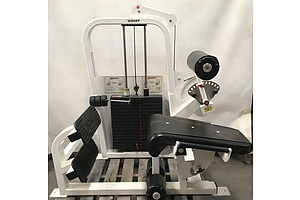 Hoist CD6200 Abs And Back Workout Machine