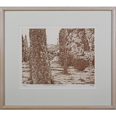 Michael Winters (born 1943), Canberra - Pines and Parliament 1993, Etching, Edition 22/22, 24.5 x 31.5 cm (image size)
