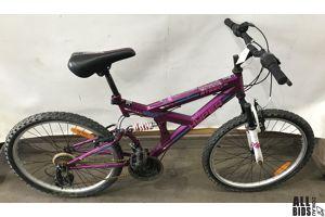 Hyper Steed Mountain Bike