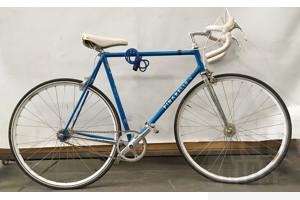 Pinarello Treviso Road Bike