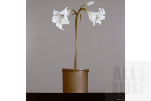 Catherine Farren- Price (born 1956), Untitled (White Oriental Lillies), Oil on Canvas, 122 x 122 cm